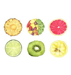 Collection fresh fruits vector