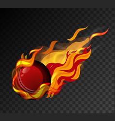 cricket ball with big flame shooting on black vector image