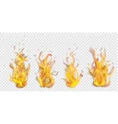 set of burning campfires vector image