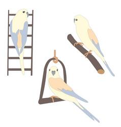 Set of three cute parrot birds sitting on branch vector
