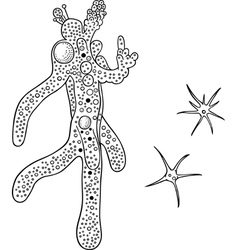 Amoeba vector