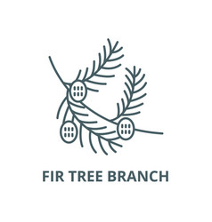fir tree branch with cones line icon vector image