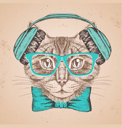 hipster animal cat hand drawing muzzle of animal vector image