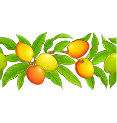 mango branches pattern on white background vector image