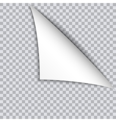 page curl with shadow on blank sheet paper vector image