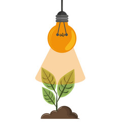 raised plant with light bulb vector image