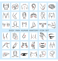 Body pain human anatomy icons vector image vector image