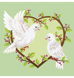 Dove on a heart shape tree vector image