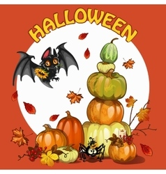 Halloween set with pumpkin bat and spider vector image