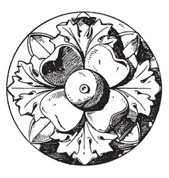 Antique rosette is an artificial rose with four vector