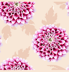 High detailed dahlia seamless vector