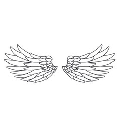 line art white bird angel fly wings design vector image