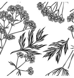 Seamless pattern with black and white valerian vector