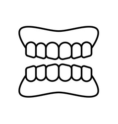 tooth gum icon vector image