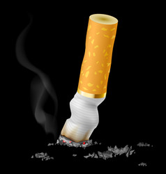 Realistic cigarette butt on black background vector
