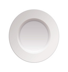 china dinner plate vector image vector image