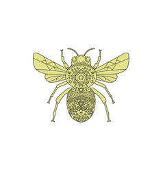 Bumble bee mandala vector