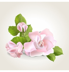 Rose corner vector image