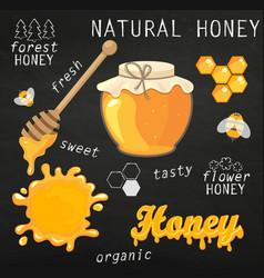 set jars with honey vector image