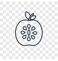 apples concept linear icon isolated on vector image