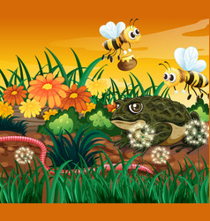 Background scene with bee and frog vector