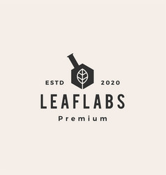 hexagon leaf lab labs hipster vintage logo icon vector image