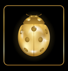 Ladybug gold insect small icon golden metal lady vector