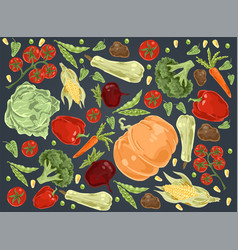 Natural vegetables pumpkin cabbage tomatoes vector