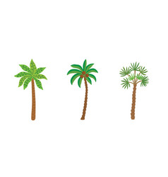 palm trees isolated on white background beautiful vector image