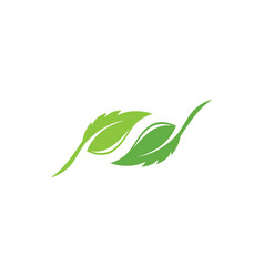 tree leaf logo design eco-friendly concept vector image