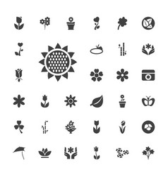 33 floral icons vector