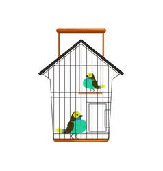 Cartoon couple of cute birds in metallic cage one vector