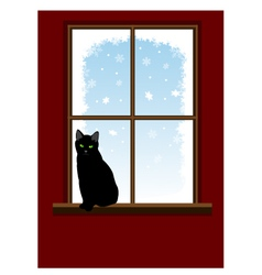 Cat on window vector image