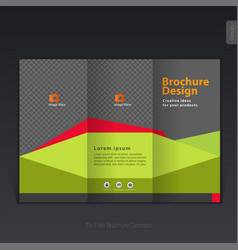colorful business tri-fold brochure template vector image