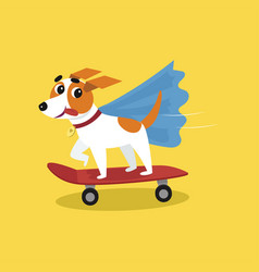 Cute jack russell terrier in blue cape riding with vector