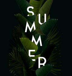 dark summer tropical design with banana palm vector image
