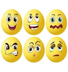 Egg expressions vector