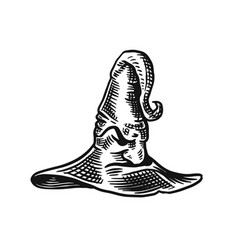 halloween witch magic hat mythical clothes hand vector image