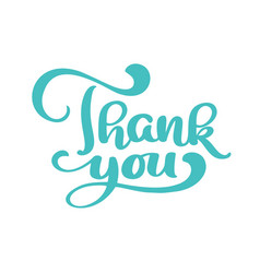 hand drawn thank you text trendy hand lettering vector image