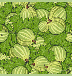 Seamless pattern all gooseberry vector