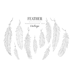 Feathers Collection Vintage Sketch vector image vector image