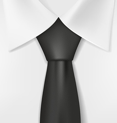 white shirt and black tie vector image