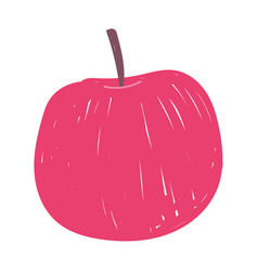 apple fruit fresh nutrition food isolated icon vector image