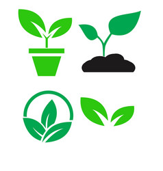 Green plant and leave color icons set vector