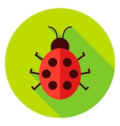 Ladybug Insect Circle Icon vector image
