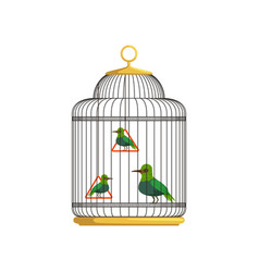 Tropical birds in antique hanging cell beautiful vector