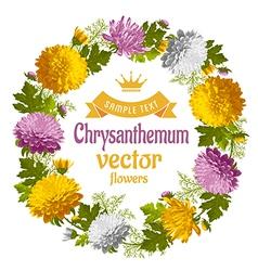 Chrysanthemum vector image