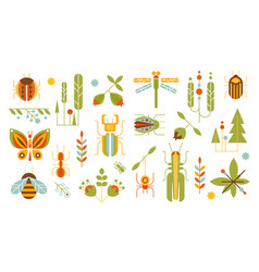 wild plants and insects set forest elements vector image