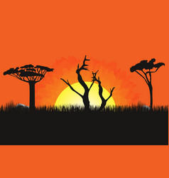 African landscape with trees and sun sunset vector