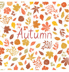autumn leaves pattern fall leaf card autumnal vector image